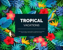 Fondo esotico tropicale royalty illustrazione gratis