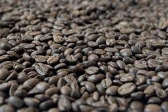 Fondo fatto dei chicchi di caff? immagine stock libera da diritti