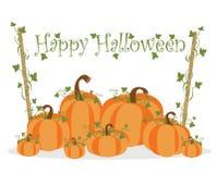 Fondo felice della zucca di Halloween Immagine Stock Libera da Diritti