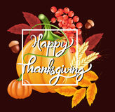 Fondo felice di celebrazione di ringraziamento Zucca, foglie, Rowan Berries, ghiande Fotografia Stock Libera da Diritti
