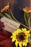 Fondo felice di ringraziamento con i confini decorati Fotografia Stock Libera da Diritti