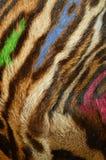 Fondo felino de la piel imagenes de archivo