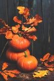 Fondo feliz de la acción de gracias con las calabazas y el leavesov del otoño Fotografía de archivo