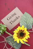Fondo feliz de la acción de gracias con las fronteras adornadas Fotografía de archivo libre de regalías