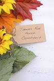 Fondo feliz de la acción de gracias con las fronteras adornadas Imagen de archivo libre de regalías