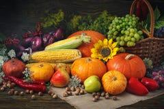 Fondo feliz del día de la acción de gracias, tabla de madera adornada con las calabazas, maíz, frutas y hojas de otoño Foto de archivo