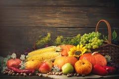 Fondo feliz del día de la acción de gracias, tabla de madera adornada con las calabazas, maíz, frutas y hojas de otoño Imagen de archivo