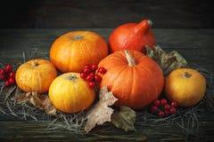 Fondo feliz del día de la acción de gracias, tabla de madera, adornados con las verduras, las frutas y las hojas de otoño Fondo d Fotografía de archivo libre de regalías