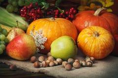 Fondo feliz del día de la acción de gracias, tabla de madera, adornados con las verduras, las frutas y las hojas de otoño Fondo d Fotos de archivo