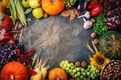 Fondo feliz del día de la acción de gracias, una tabla adornada con las calabazas, maíz y hojas de otoño Imágenes de archivo libres de regalías