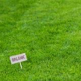 Fondo fertile dell'erba verde con il segno organico Fotografia Stock