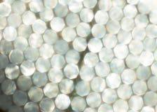Fondo festivo de las luces metálicas La Navidad abstracta centelleó fondo brillante con las luces de plata defocused del bokeh Foto de archivo libre de regalías