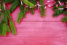 Fondo festivo dei rami di albero verdi fragranti dell'abete con lo stinco Fotografia Stock