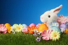 Fondo festivo di Pasqua con coniglio, i fiori e l'uovo variopinto Fotografia Stock Libera da Diritti