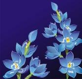Fondo floral abstracto Imagenes de archivo
