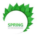 Fondo floral abstracto de la primavera con el lugar para su texto Imágenes de archivo libres de regalías