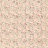 Fondo floral abstracto elegante lamentable descolorado sucio marrón y rosado del vintage Fotos de archivo libres de regalías