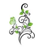 Fondo floral abstracto hermoso con las hojas y la mariposa del verde Foto de archivo libre de regalías