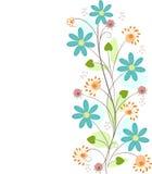 Fondo floral aislado Fotografía de archivo libre de regalías