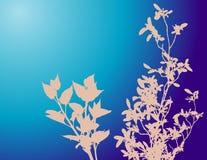 Fondo floral azul Fotografía de archivo