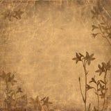 Fondo floral Brown de Grunge Fotografía de archivo