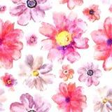 Fondo floral Bud Beautiful For Decoration Design Stri de moda Fotografía de archivo libre de regalías