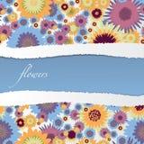 Fondo floral colorido Foto de archivo libre de regalías