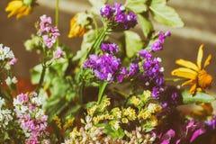 Fondo floral colorido con las campanas hermosas en la luz del sol masterpiece imagen de archivo