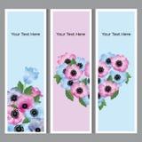 Fondo floral con el lugar para su texto Imagen de archivo