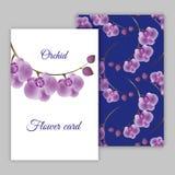 Fondo floral con el lugar para su texto Florece orquídeas Fotografía de archivo