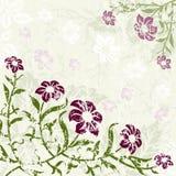 Fondo floral con grunge foto de archivo libre de regalías