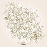 Fondo floral con la manzanilla Stock de ilustración