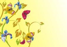 Fondo floral con la mariposa Imagen de archivo libre de regalías