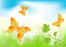Fondo floral con la mariposa. Fotos de archivo libres de regalías