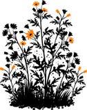 Fondo floral con las manzanillas libre illustration
