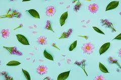 Fondo floral de Flatlay con las margaritas, los wildflowers, los pétalos y las hojas Fotografía de archivo
