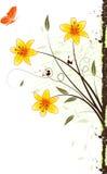 Fondo floral de Grunge Imagen de archivo