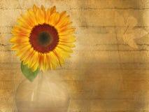 Fondo floral de Grunge Fotografía de archivo