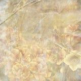 Fondo floral de Grunge Foto de archivo