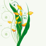 Fondo floral de hadas Foto de archivo