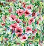Fondo floral de la acuarela Fotos de archivo