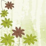 Fondo floral de la acuarela Fotografía de archivo