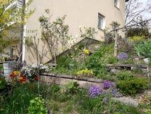 Fondo floral de la flor Garden Fotografía de archivo libre de regalías