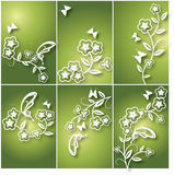 Fondo floral de la flor y de la mariposa Imagenes de archivo