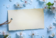 Fondo floral de la frontera de Art Spring Imagen de archivo libre de regalías