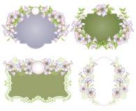 Fondo floral de la vendimia Foto de archivo