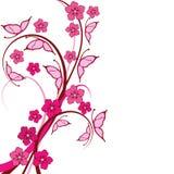 Fondo floral de las mariposas rosadas Fotografía de archivo libre de regalías