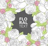 Fondo floral de las peonías Imagen de archivo