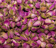 Fondo floral de las rosas rosadas Imagen de archivo libre de regalías