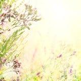 Fondo floral de pascua Fotos de archivo